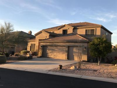 Scottsdale Single Family Home For Sale: 10646 E Butherus Drive