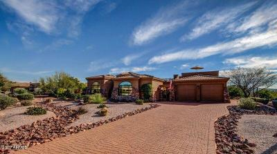 Rio Verde Single Family Home For Sale: 24903 N McDowell Mountain Drive