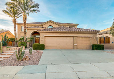 Phoenix Single Family Home For Sale: 16226 S 16th Lane