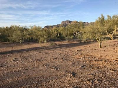 Superstition Mountain Residential Lots & Land For Sale: 6431 E Flat Iron Loop