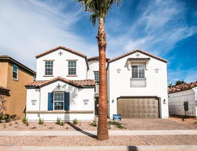 Gilbert Single Family Home For Sale: 1456 E Lexington Avenue