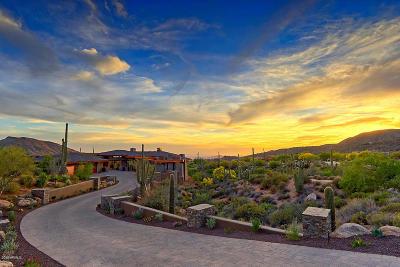 Single Family Home For Sale: 9847 E Chiricahua Pass