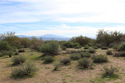Scottsdale Residential Lots & Land For Sale: N 156th Street