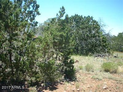 Seligman AZ Residential Lots & Land For Sale: $13,000