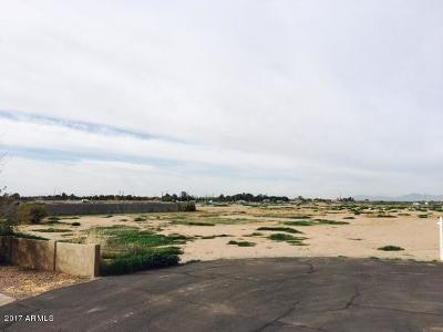 Gilbert Residential Lots & Land For Sale: 1765 E Camina Plata Court