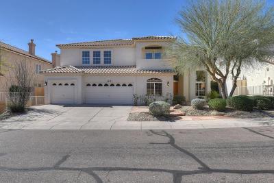 Phoenix Single Family Home For Sale: 1419 E Captain Dreyfus Avenue