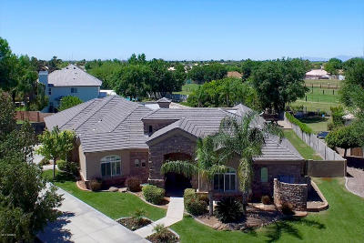 Gilbert Single Family Home For Sale: 4403 E Desert Lane Court