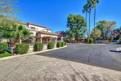 Phoenix Single Family Home For Sale: 626 W Ocotillo Road
