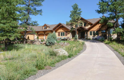 Flagstaff Single Family Home For Sale: 205 E Flat Rock Ridge