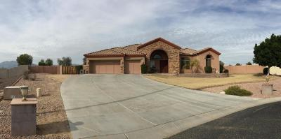 Waddell Single Family Home For Sale: 18220 W North Court