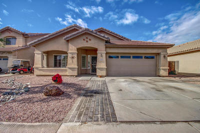 Goodyear Single Family Home For Sale: 3836 N 143rd Lane