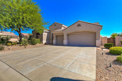 Single Family Home For Sale: 26095 N 115th Way
