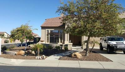 Peoria Single Family Home For Sale: 9564 W Running Deer Trail