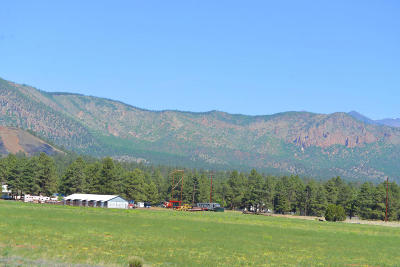 Flagstaff Single Family Home For Sale: 6701 N Rain Valley Road