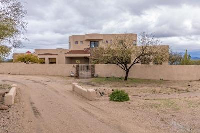 Rio Verde Single Family Home For Sale: 30117 N 170th Street