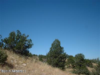 Williams AZ Residential Lots & Land For Sale: $16,000