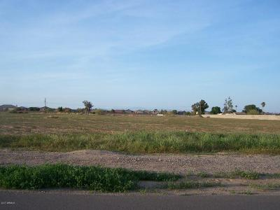 Surprise Residential Lots & Land For Sale: 151xx W Tierra Buena Lane
