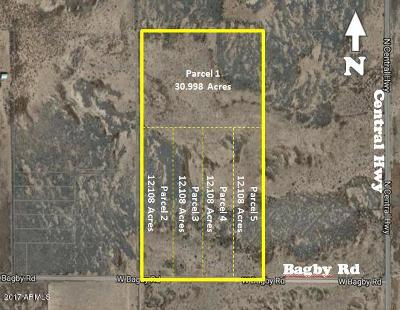 Residential Lots & Land For Sale: 4398 W Bagby Road