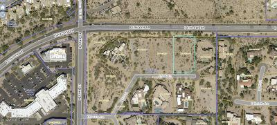 Paradise Valley Residential Lots & Land For Sale: 3310 E Stella Lane