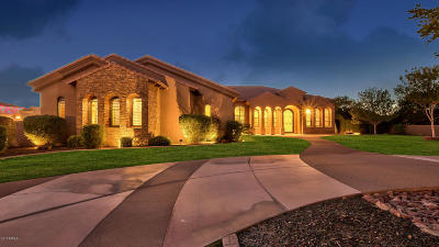 Gilbert Single Family Home For Sale: 24512 S 182nd Place
