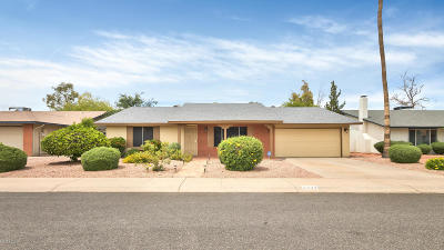 Phoenix Single Family Home For Sale: 11824 S Magic Stone Drive