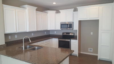 Peoria Single Family Home For Sale: 29031 N 124th Drive