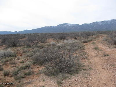 Yavapai County Residential Lots & Land For Sale: Hwy 260 N Forest Service Road 9604 Road