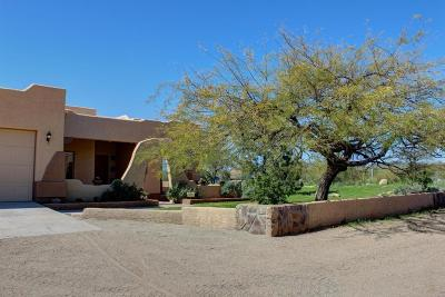 New River AZ Single Family Home For Sale: $559,000