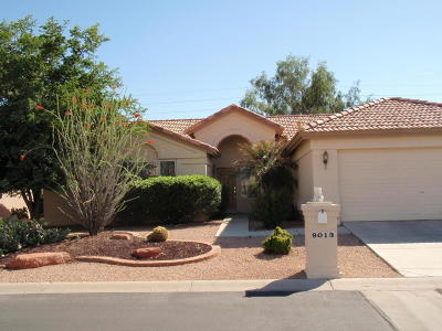 Single Family Home For Sale: 9013 E Stoney Vista Drive