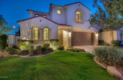 Chandler Single Family Home For Sale: 2321 W Desert Broom Place