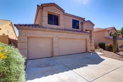 Phoenix Single Family Home For Sale: 1755 W Thunderhill Drive