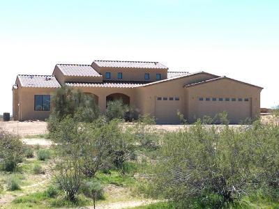 Wickenburg Single Family Home For Sale: 21795 W El Grande Trail