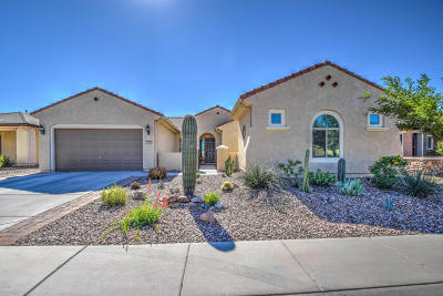 Pinal County Single Family Home For Sale: 3597 N Hudson Drive