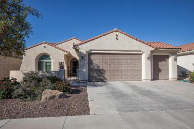 Buckeye Single Family Home For Sale: 26478 W Potter Drive