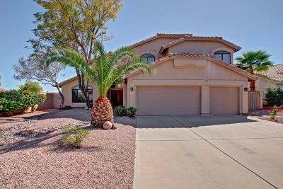 Phoenix Single Family Home For Sale: 3531 E Manso Street