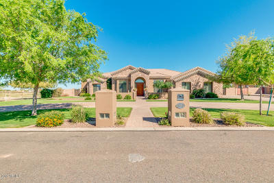 Queen Creek Single Family Home For Sale: 18940 E Via Park Street
