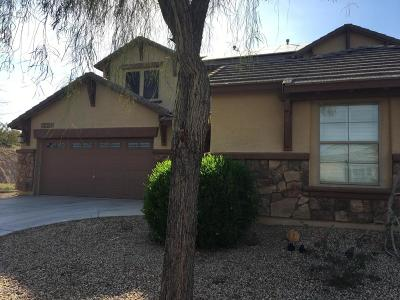 Goodyear Single Family Home UCB (Under Contract-Backups): 18368 W Verdin Road
