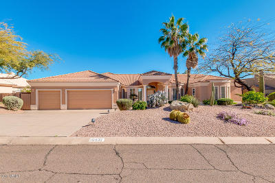 Fountain Hills Single Family Home For Sale: 16430 E Desert Sage Drive