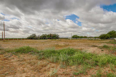 San Tan Valley Residential Lots & Land For Sale: 36768 N Wyatt Drive