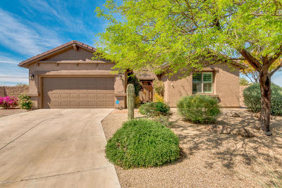 San Tan Valley Rental For Rent: 1222 W Cutleaf Circle