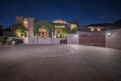 Phoenix Single Family Home For Sale: 11616 S Equestrian Trail