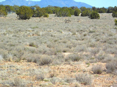 Seligman AZ Residential Lots & Land For Sale: $7,500
