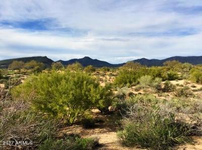 Scottsdale Residential Lots & Land For Sale: 10108 E Sundance Trail