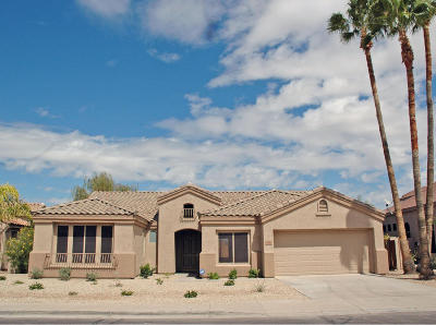 Chandler Single Family Home For Sale: 700 W Oriole Way