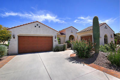 Pinal County Single Family Home For Sale: 4401 N Coronado Drive