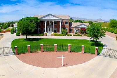 Mesa Single Family Home For Sale: 1424 E Hermosa Vista Circle