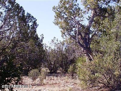 Seligman AZ Residential Lots & Land For Sale: $10,500