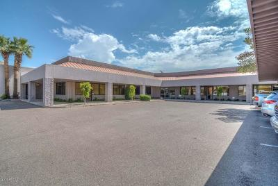 Commercial For Sale: 12633 N Cave Creek Road