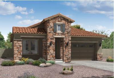Mesa Single Family Home For Sale: 4627 S Concorde Lane