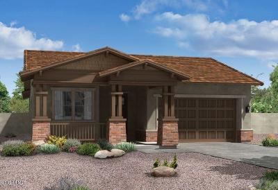 Mesa Single Family Home For Sale: 4636 S Centric Way